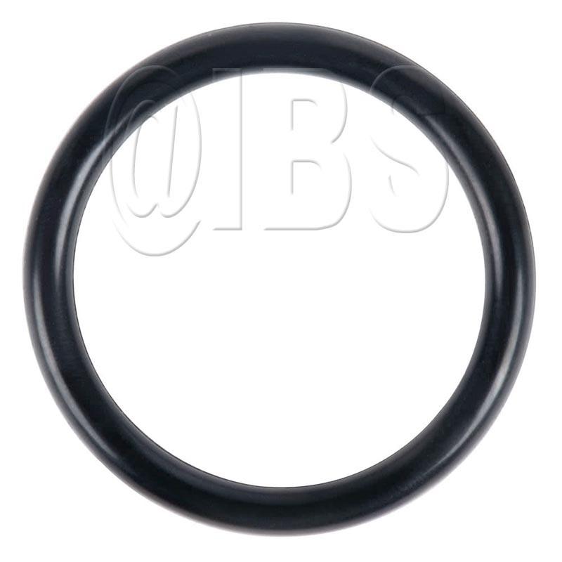 15.0.289 Rt50-74 O Ring S16