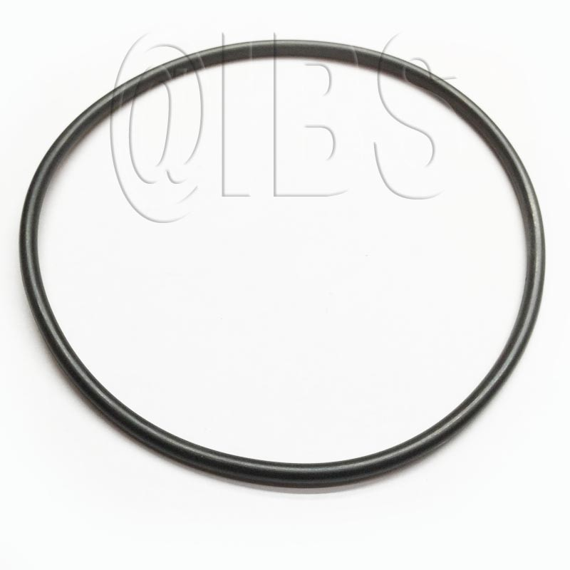 164.0.010 O Ring Sf460