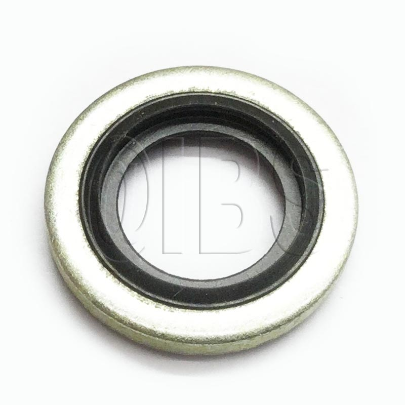 5/0018 Bonded Seal